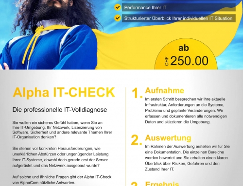 Alpha IT-Check ab CHF 250.00